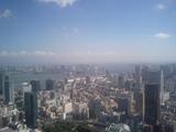 東京タワーからレインボーブリッジ方面
