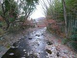 桂川と紅葉