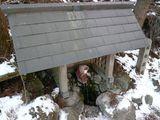 雪化粧の延命猿