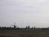 道路から見えるKinderdijkの風車群
