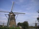 風車を青空と芝生が挟んで見事なコントラストだった