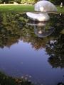 池に写る青空