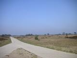 国立公園の自転車道