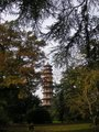 Kew Garden Pagoda