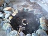 湯気を上げる卵用温泉
