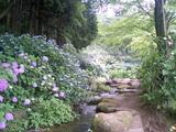 小野池あじさい公園の内部