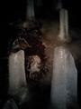 氷穴内部の氷柱